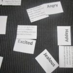 Montessori Orcas learning emotions