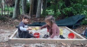 Tadpoles learn interactive play
